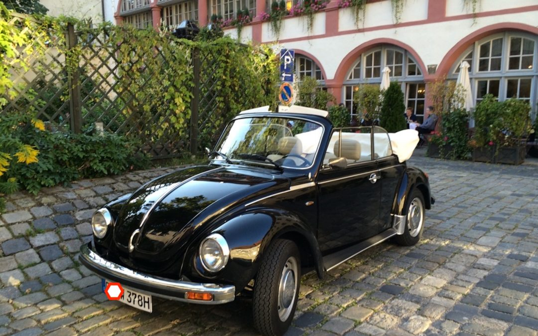 Käfer Cabrios im Vorlauf!!